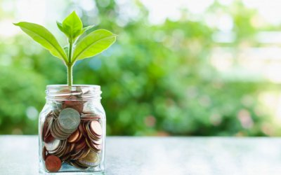 plant-growing-from-coins-in-the-glass-jar-on-blurred-green-natural-background_9555-57